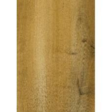 ПЕРВАЯ Сибирская Дуб коричневый